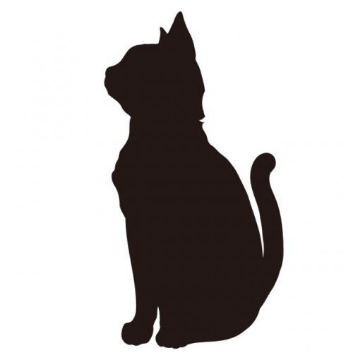 黒猫と異世界転移を楽しもう!