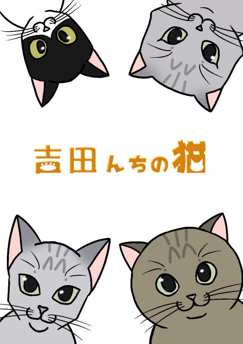 吉田んちの猫