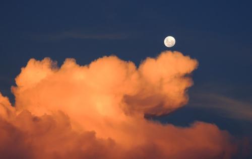 太陽と月の禁断